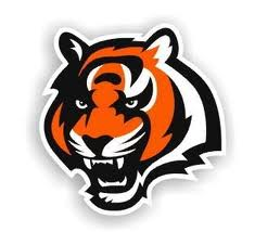 Atlanta Falcons offseason  Bengal10