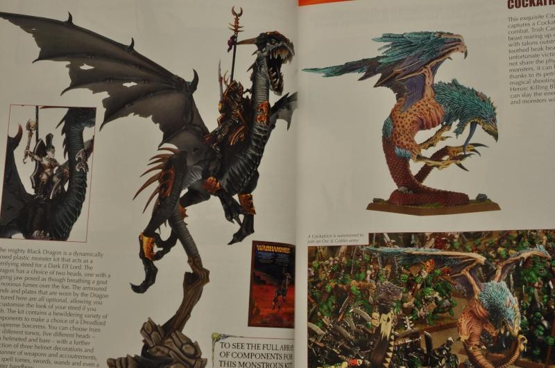 Nouveautés Warhammer Battle - Page 4 Dsc_6713