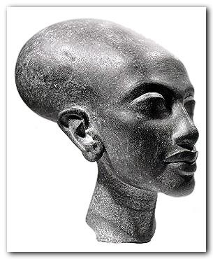 Etude sur prise de tête de nos ancêtres Photo_11