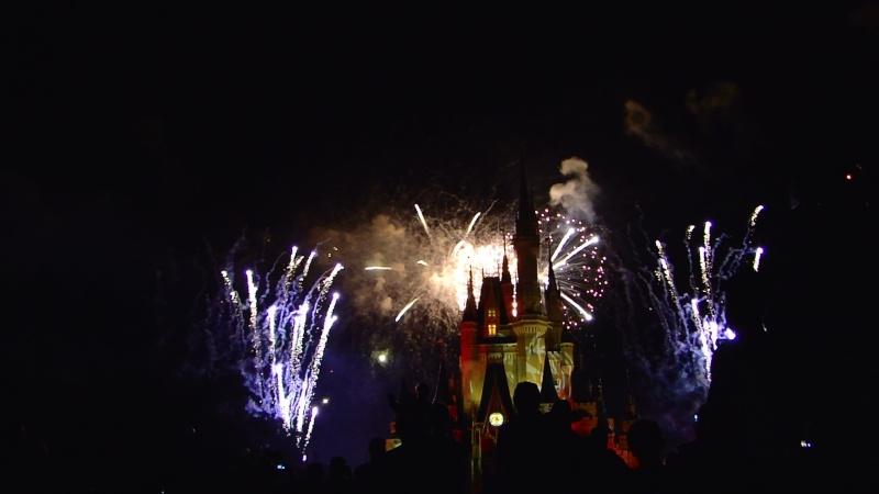 Vos photos des feux d'artifice et show nocturne ! Mah01614