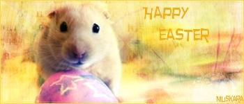 Les résultats du concours de pâques ! Easter10