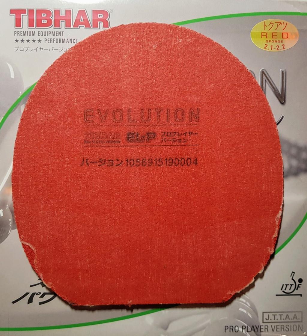 Thibar evolution ELP rouge 2-1/2.2 210