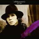 Acid Black Cherry discografia & videografia Acidlk10