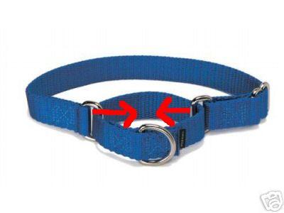 Le collier martingale Collie18