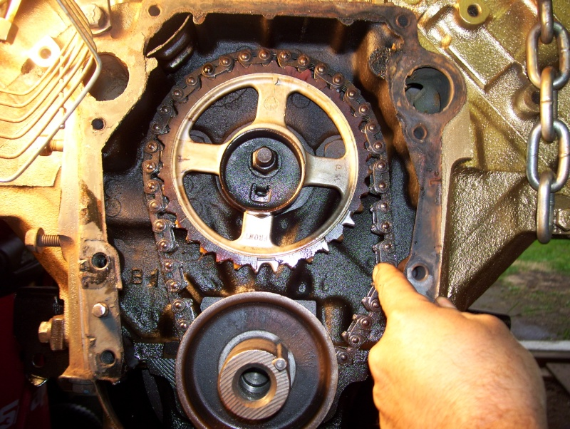 timing chain 101_2124