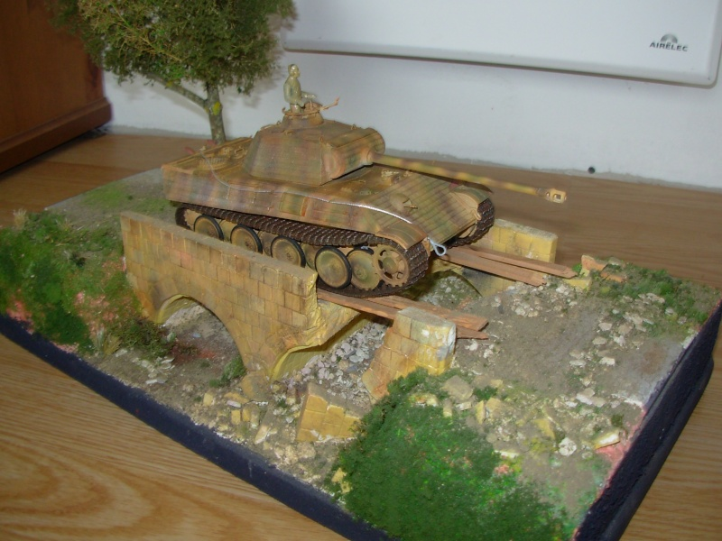 petit pont normand......passe ou passe pas ???????(panther tam 1/35eme+ zim verlinden fig dragon,tam) Dscn0013