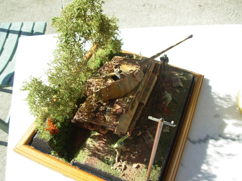 abandon tigre II (tigre dragon 1/35eme) Dscn1728