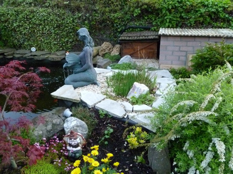 petite soirée photos au jardin... P1010018