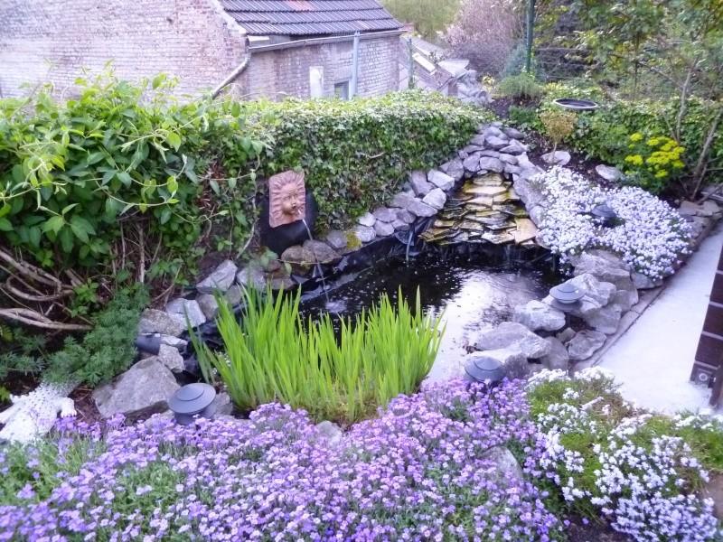 petite soirée photos au jardin... P1010022