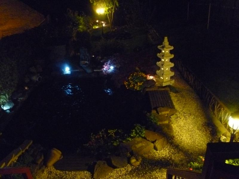 photos de nuit... P1010023