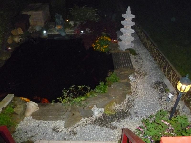photos de nuit... P1010024