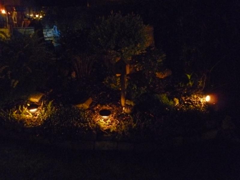 photos de nuit... P1010027