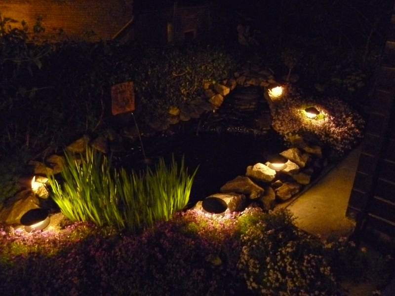 photos de nuit... P1010028