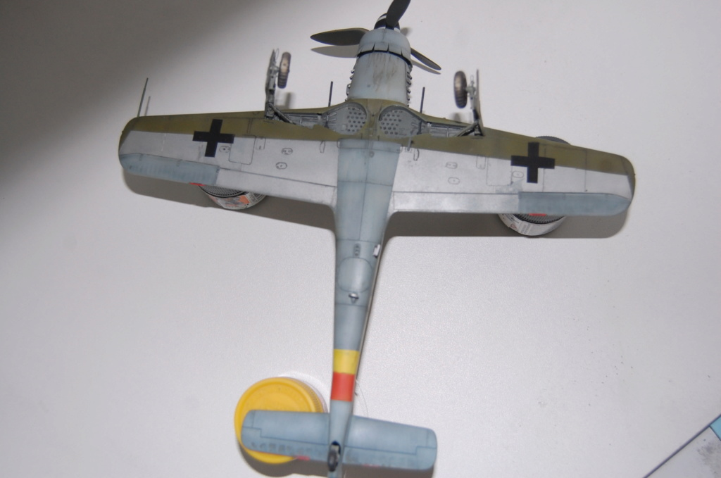 Fw-190 D 9 Tamiya 1/48 Dsc_5518