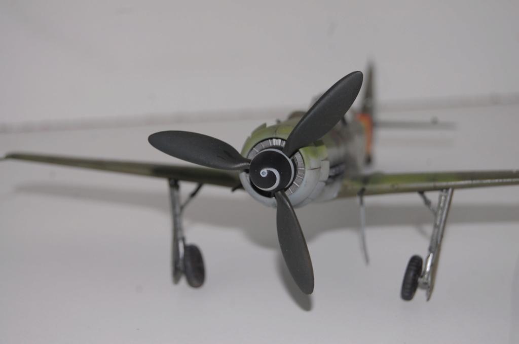 Fw-190 D 9 Tamiya 1/48 Dsc_5519
