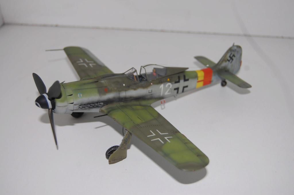 Fw-190 D 9 Tamiya 1/48 Dsc_5520