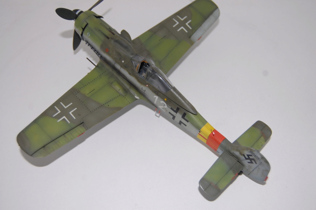 Fw-190 D 9 Tamiya 1/48 Dsc_5522
