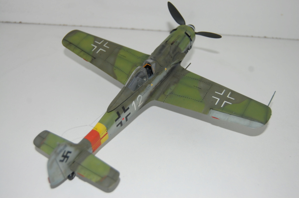 Fw-190 D 9 Tamiya 1/48 Dsc_5523