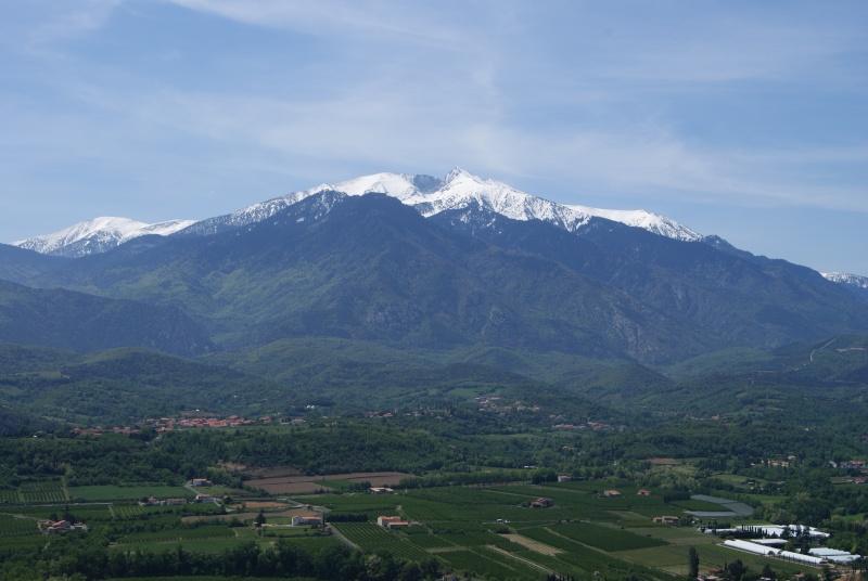 Les Pyrénées Orientales (66) Dsc00410