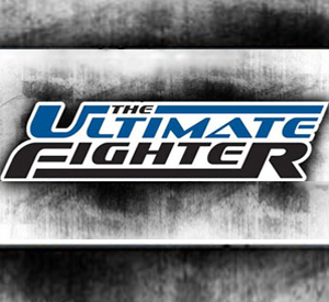 Listes de vos Fighters The_ul10