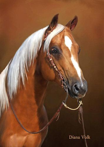 Les beaux dessins de chevaux - Page 2 15013_10