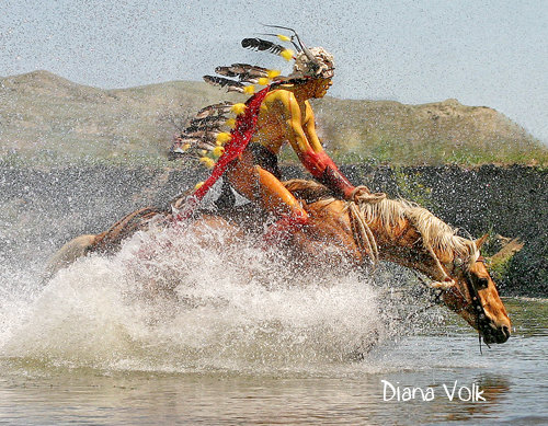 Les beaux dessins de chevaux - Page 2 25509_10