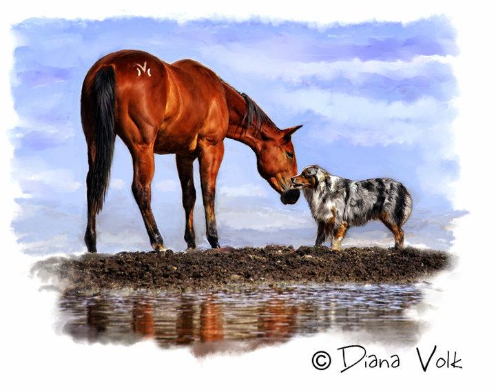 Les beaux dessins de chevaux - Page 2 46721_10