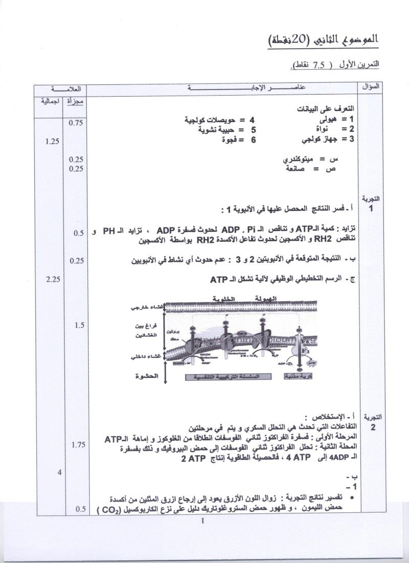 امتحان شهادة البكالوريا التجريبي للتعليم الثانوي - ماي 2011 00310