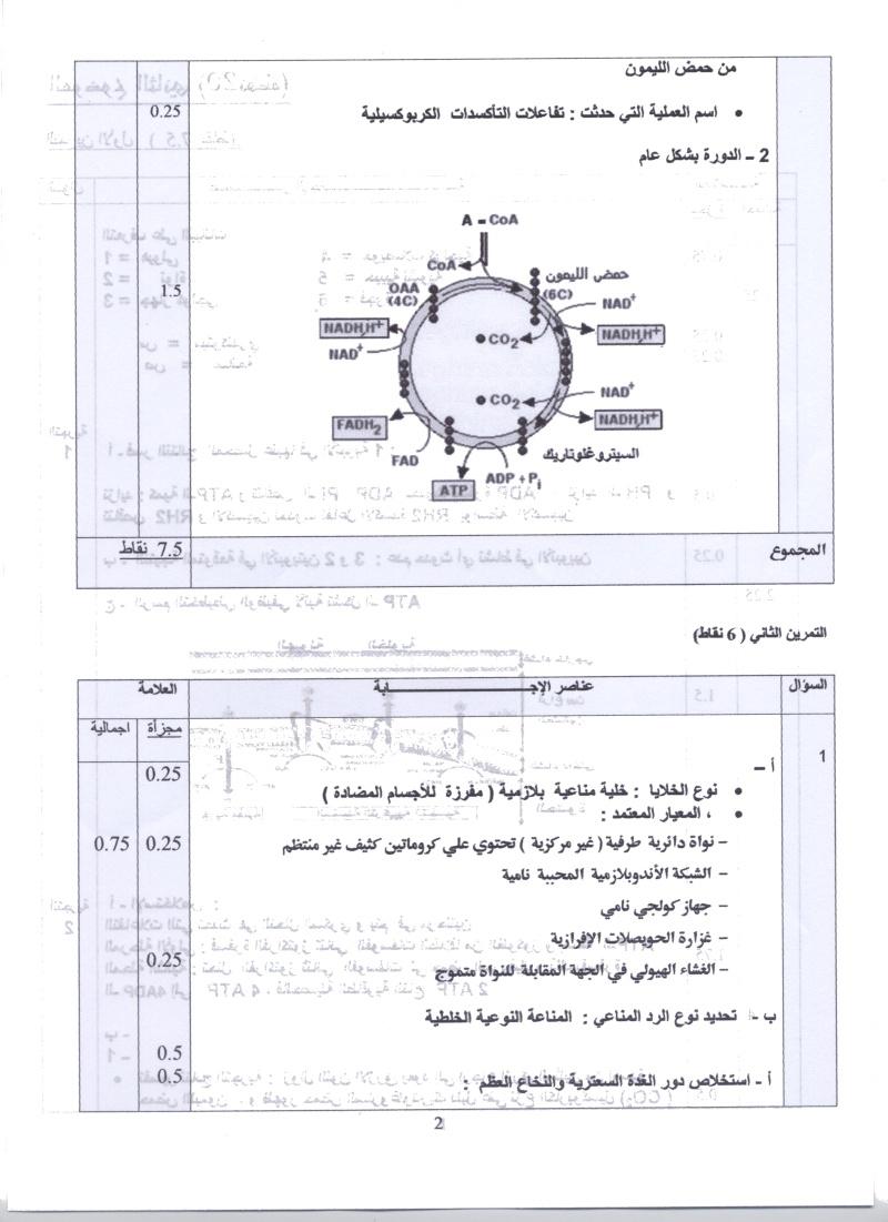 امتحان شهادة البكالوريا التجريبي للتعليم الثانوي - ماي 2011 003a10