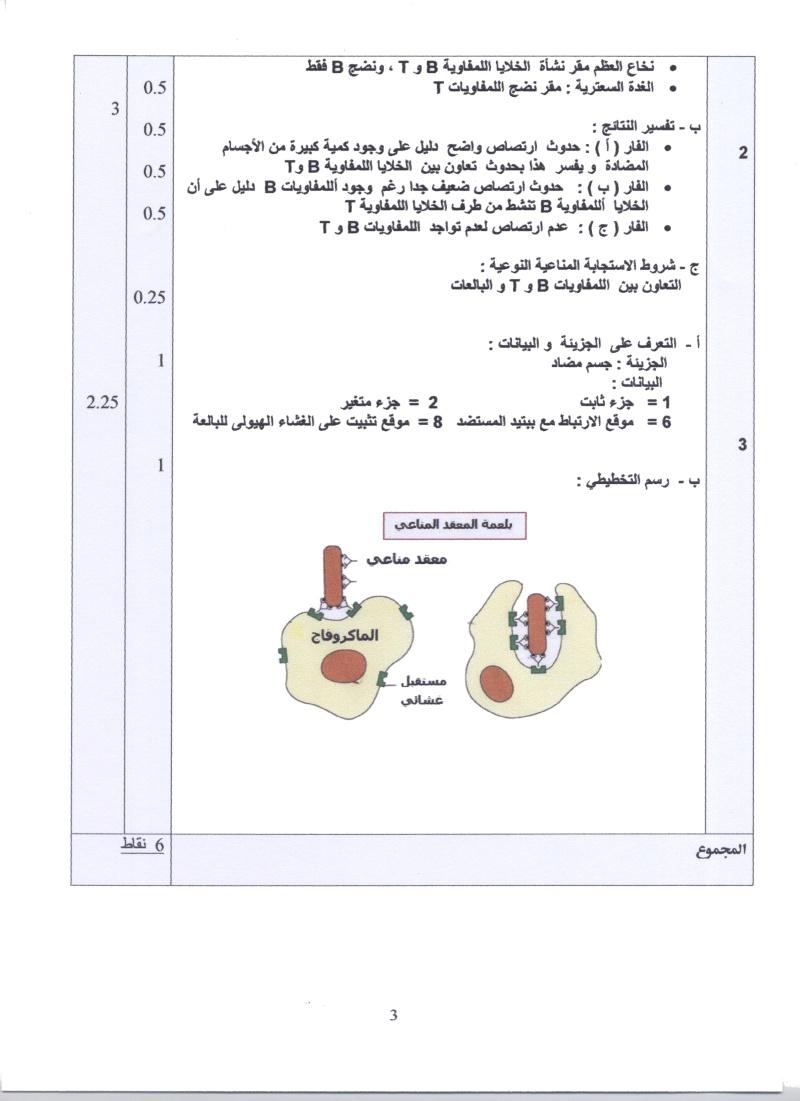 امتحان شهادة البكالوريا التجريبي للتعليم الثانوي - ماي 2011 00410