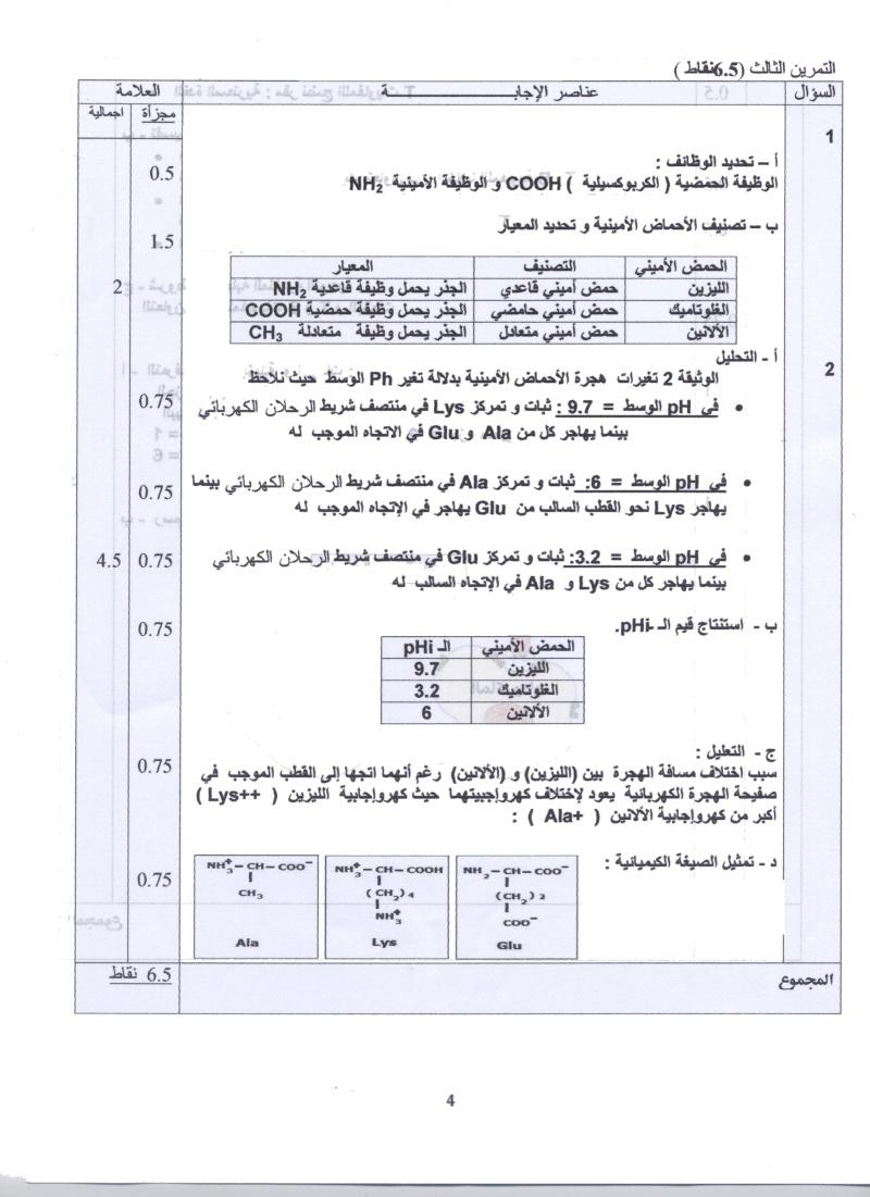 امتحان شهادة البكالوريا التجريبي للتعليم الثانوي - ماي 2011 004a10