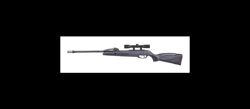 Modele carabine gamo  Gamo_s10