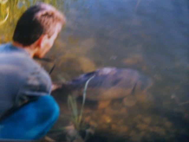 Pêche sur l'hérault Imgp2613