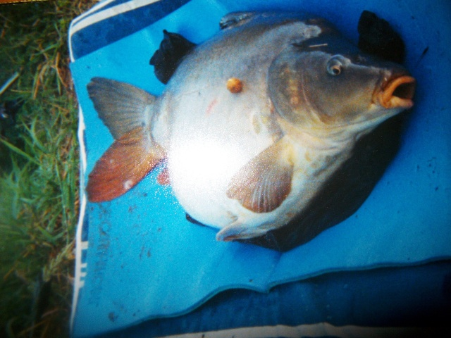 Pêche sur l'hérault Imgp2615