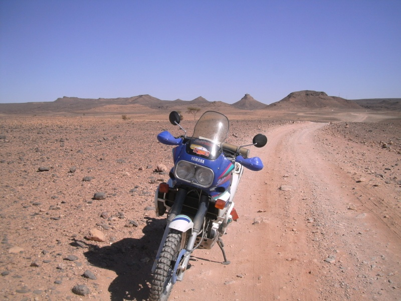 protège main Maroc_18
