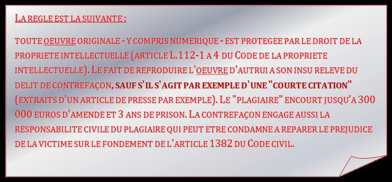 Propos sur la police : Camélia Jordana propose à Christophe Castaner de débattre avec elle en direct Oie_tr30