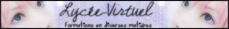 Devenir partenaire avec le Lycée-Virtuel  Contac10
