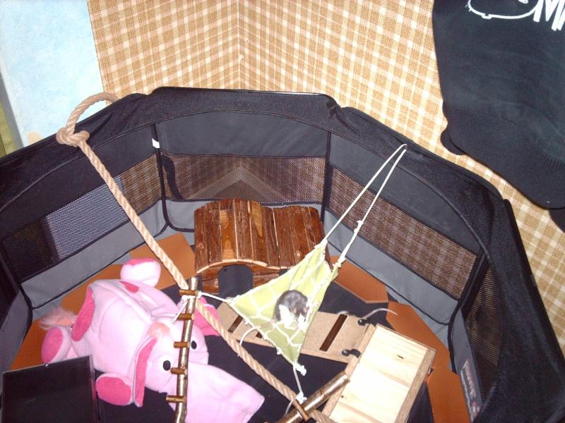 Enclos en nylon reconverti en aire de jeu ( photos ) - Page 4 Imag0829