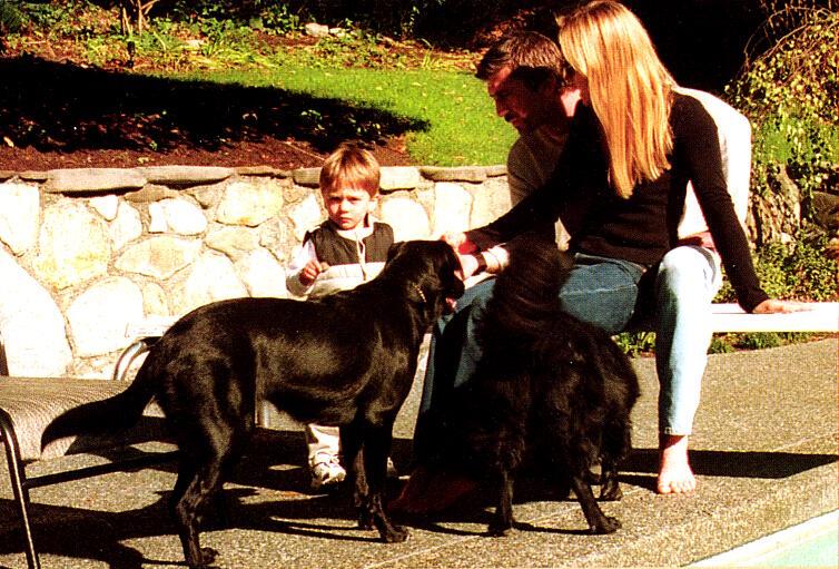 Joe et ses chiens Joef-210