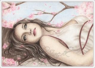 Fan-Artes Imagens: Blosso10