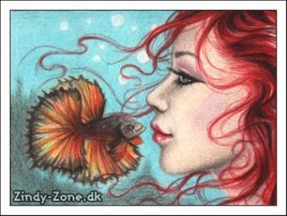 Fan-Artes Imagens: Fishin10