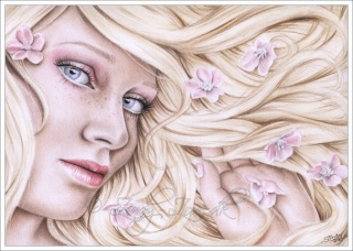 Fan-Artes Imagens: Flower11