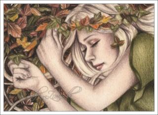 Fan-Artes Imagens: Sleepy10