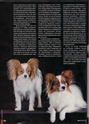 "Журнал ""Друг"" Май 2011, №5 Папийон королевский компаньон Nddddn15"