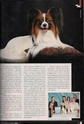 "Журнал ""Друг"" Май 2011, №5 Папийон королевский компаньон Nddddn16"