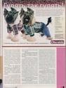 "Журнал ""Друг"" Май 2011, №5 Папийон королевский компаньон Nddddn21"