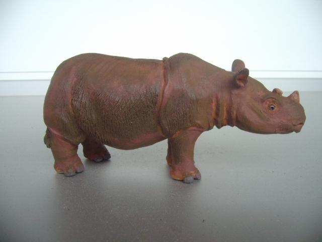 My nice new sumatran rhino by Abu Rai Img_4523