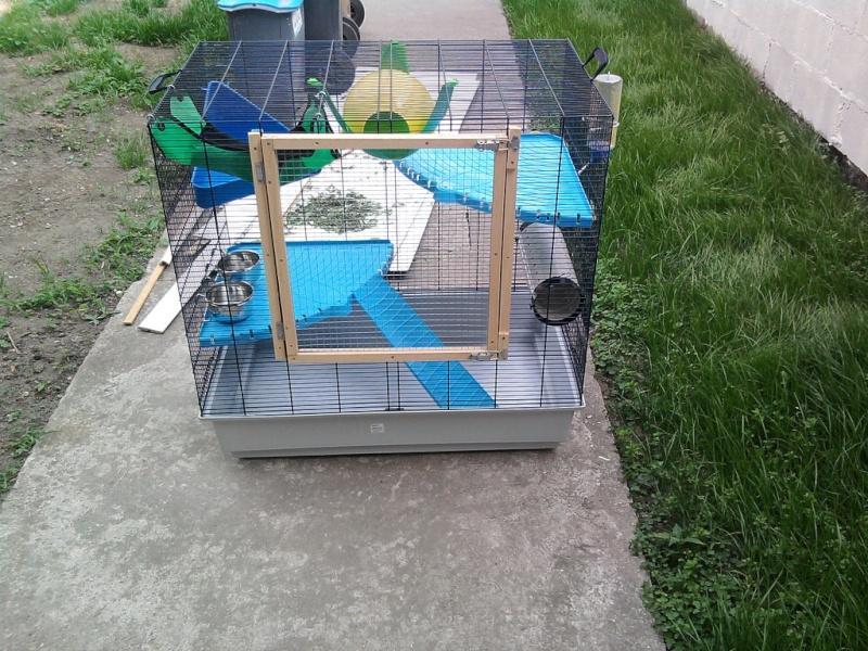 vends cage freddy 2 max Photo010