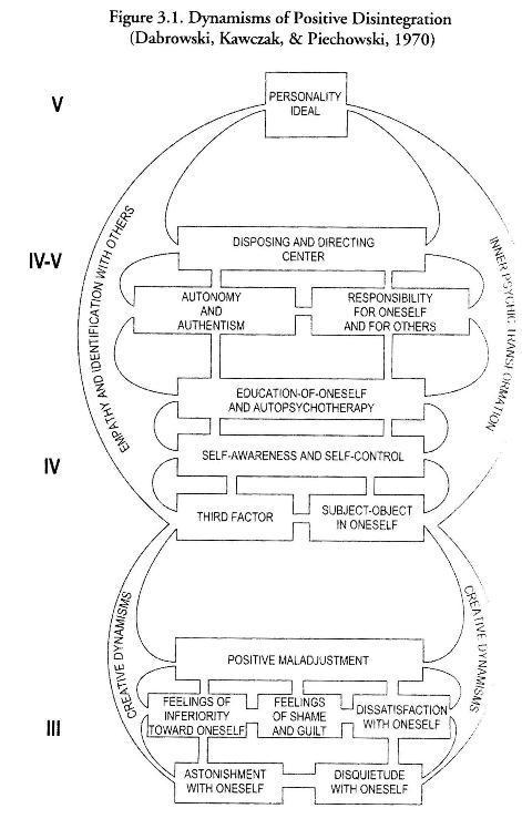 Théorie de la désintégration positive de Dabrowski - Page 2 Dynami13