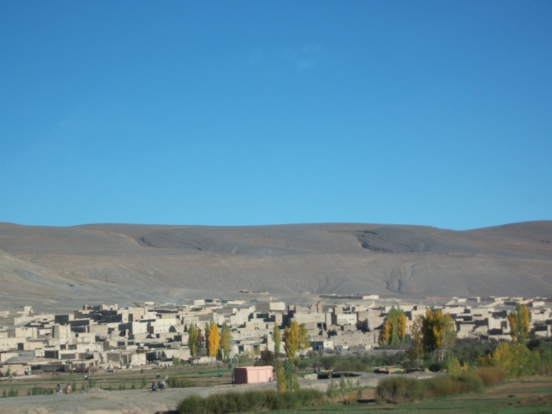 retour maroc oct - nov 2010 - Page 4 11310
